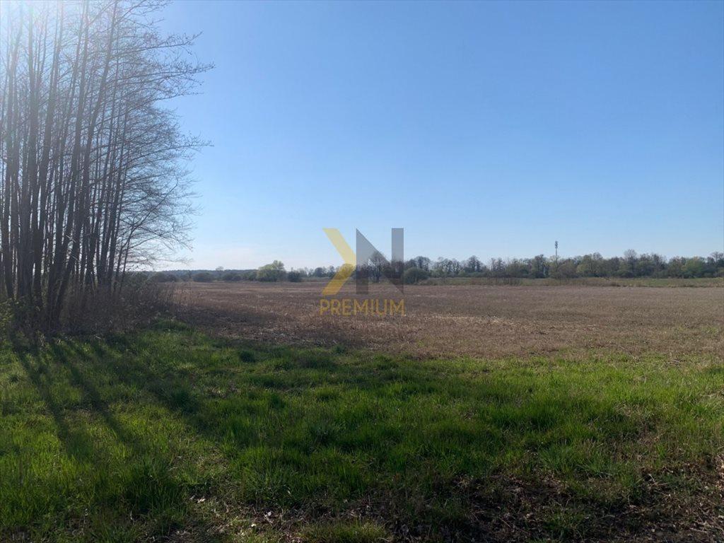 Działka rolna na sprzedaż Chrząstawa Wielka, Młyńska  22700m2 Foto 2