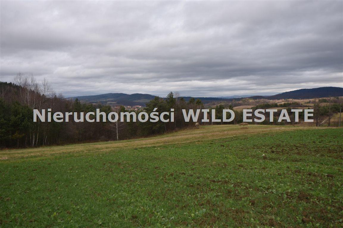 Działka rolna na sprzedaż Solina, Berezka  9520m2 Foto 1