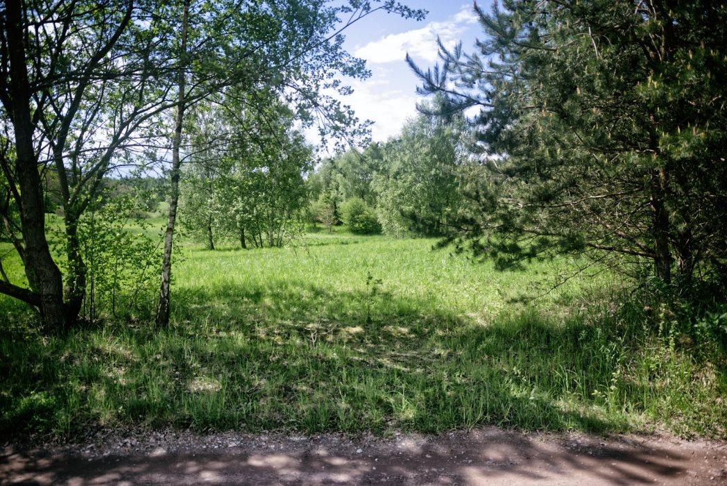 Działka siedliskowa na sprzedaż Graniczna Wieś  10072m2 Foto 3