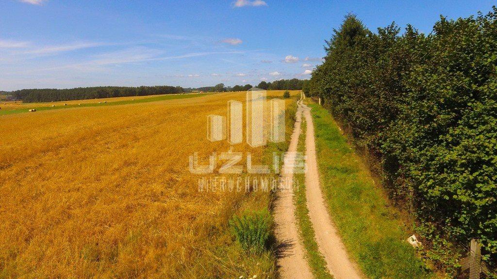 Działka rolna na sprzedaż Chwaszczyno, Polna  20000m2 Foto 4
