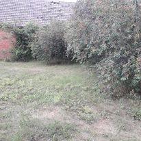 Działka siedliskowa na sprzedaż Krąpiel, Okolica Krąpieli  7000m2 Foto 6