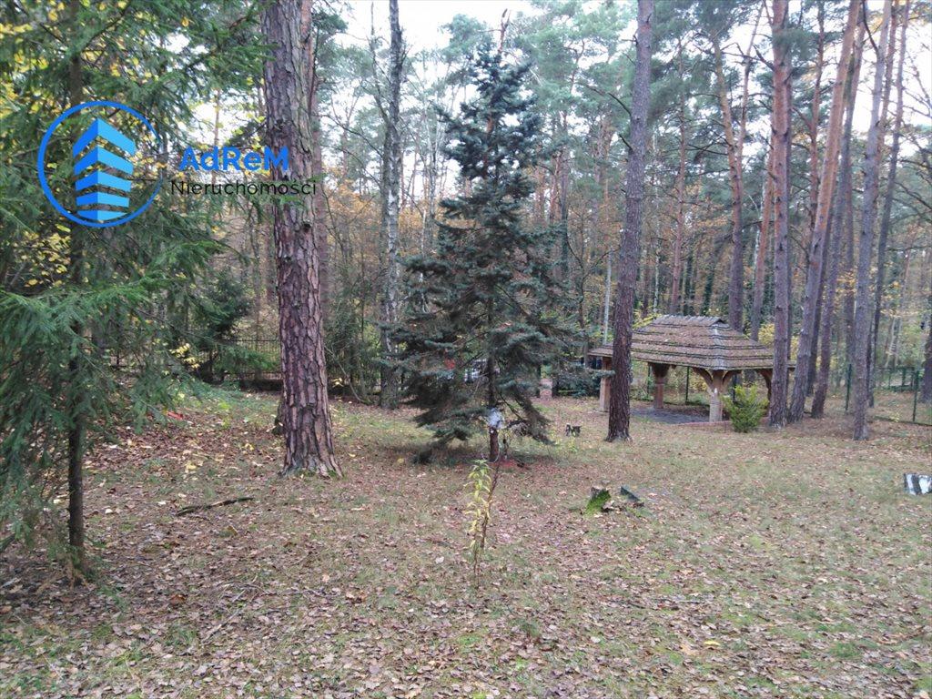 Działka leśna na sprzedaż Jeziórko, Świerkowa  5000m2 Foto 7
