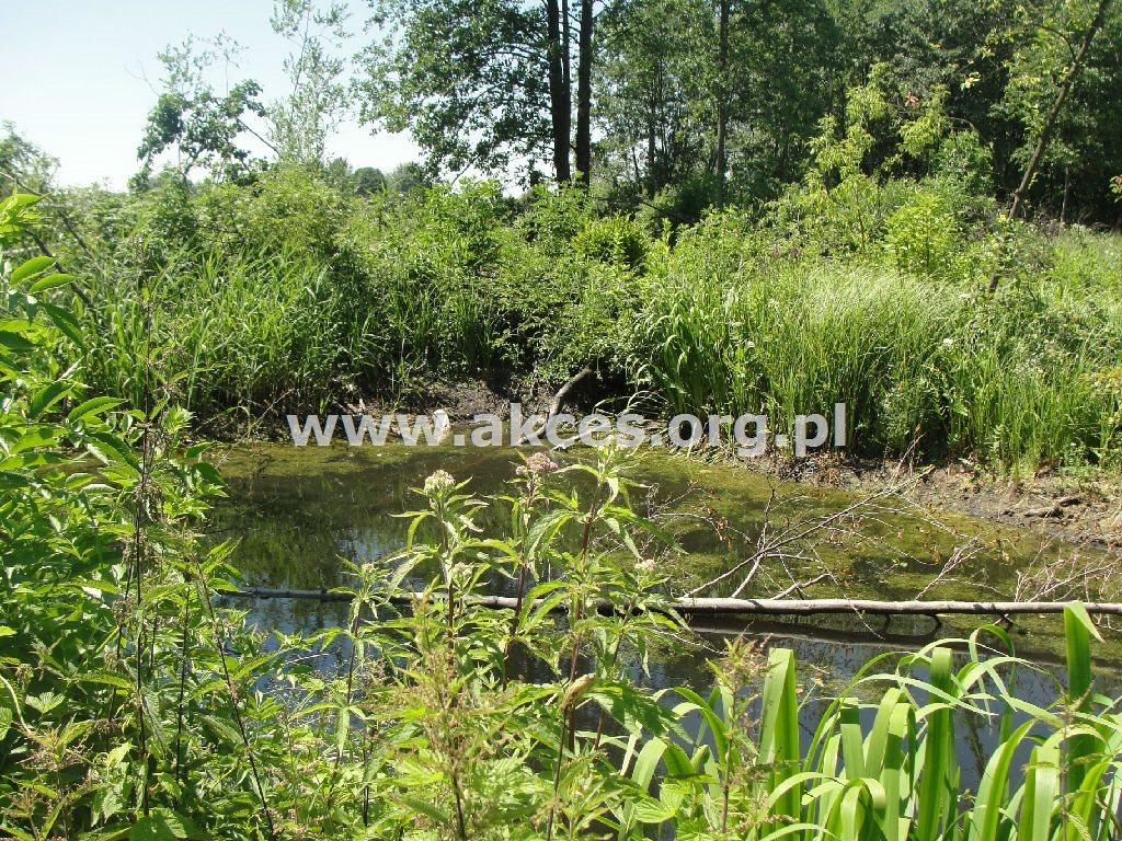 Działka rolna na sprzedaż Żyrów  166700m2 Foto 8