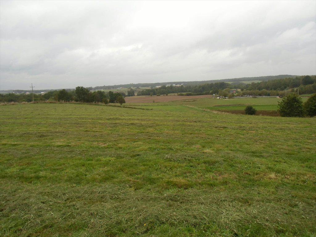 Działka rolna na sprzedaż Ustarbowo, Lipowa  9398m2 Foto 2