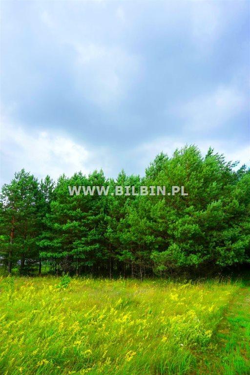 Działka budowlana na sprzedaż Suwałki, Gawrych-Ruda  10056m2 Foto 5