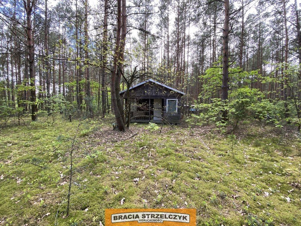 Działka leśna na sprzedaż Wólka Mlęcka  2800m2 Foto 1