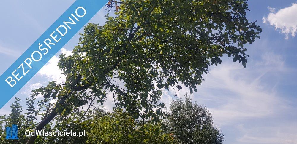 Działka budowlana na sprzedaż Krępa, Długa  3522m2 Foto 7