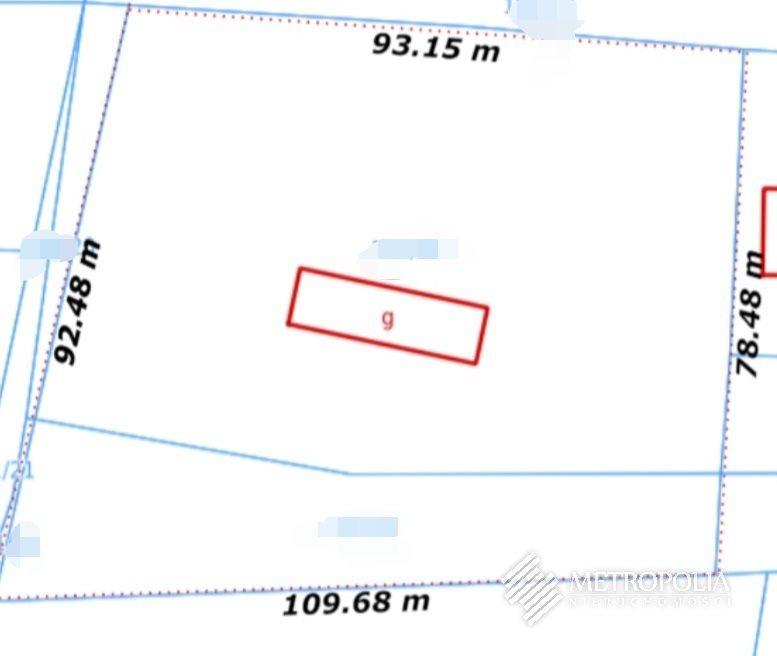 Działka budowlana na sprzedaż Regulice  8600m2 Foto 5