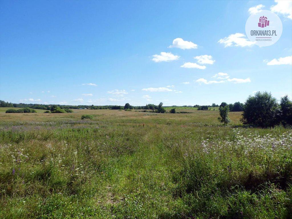 Działka rolna na sprzedaż Orzechowo, gm. Dobre Miasto  198900m2 Foto 7