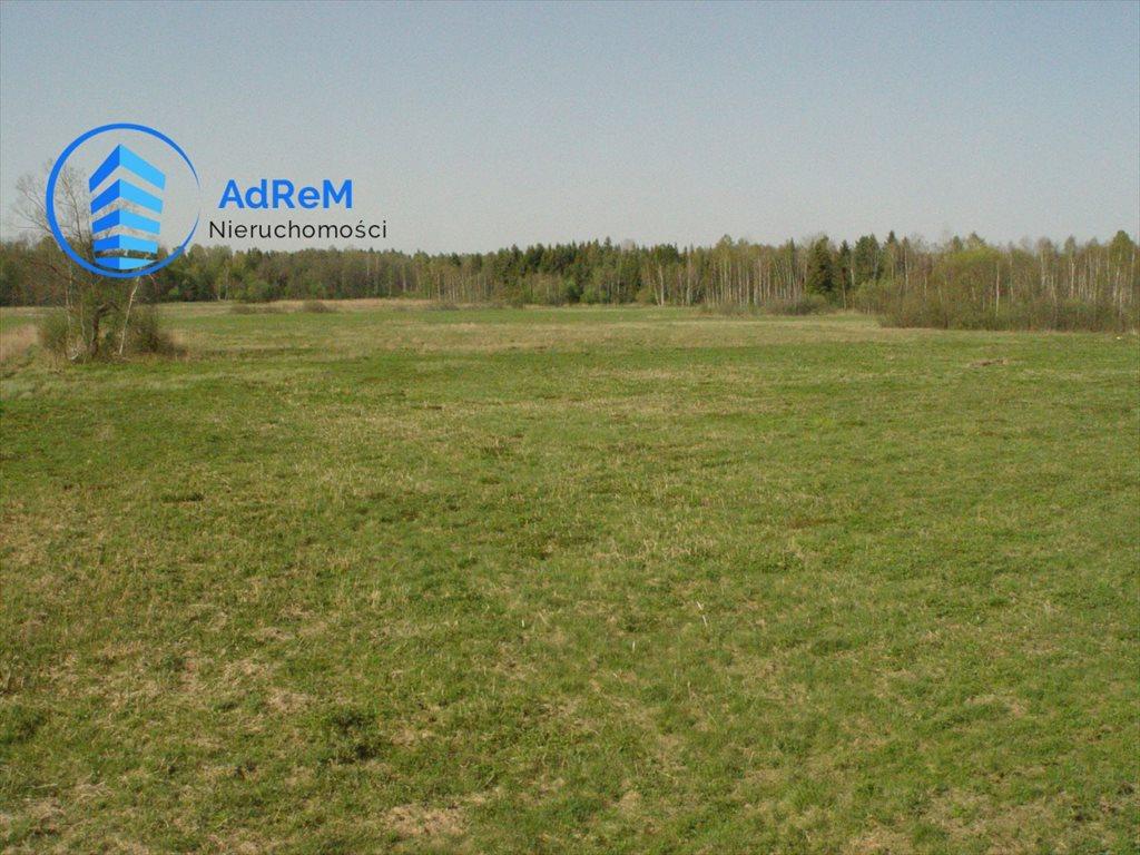 Działka rolna na sprzedaż Dworzysk  20000m2 Foto 2