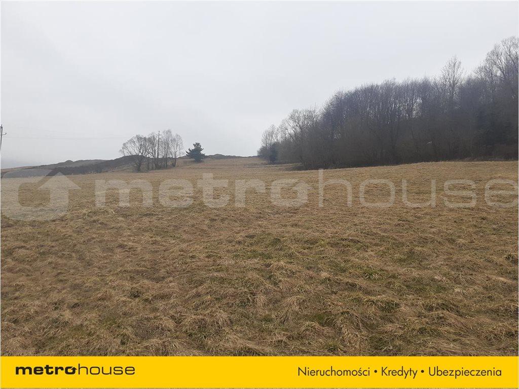 Działka rolna na sprzedaż Rzepedź, Komańcza  5000m2 Foto 6