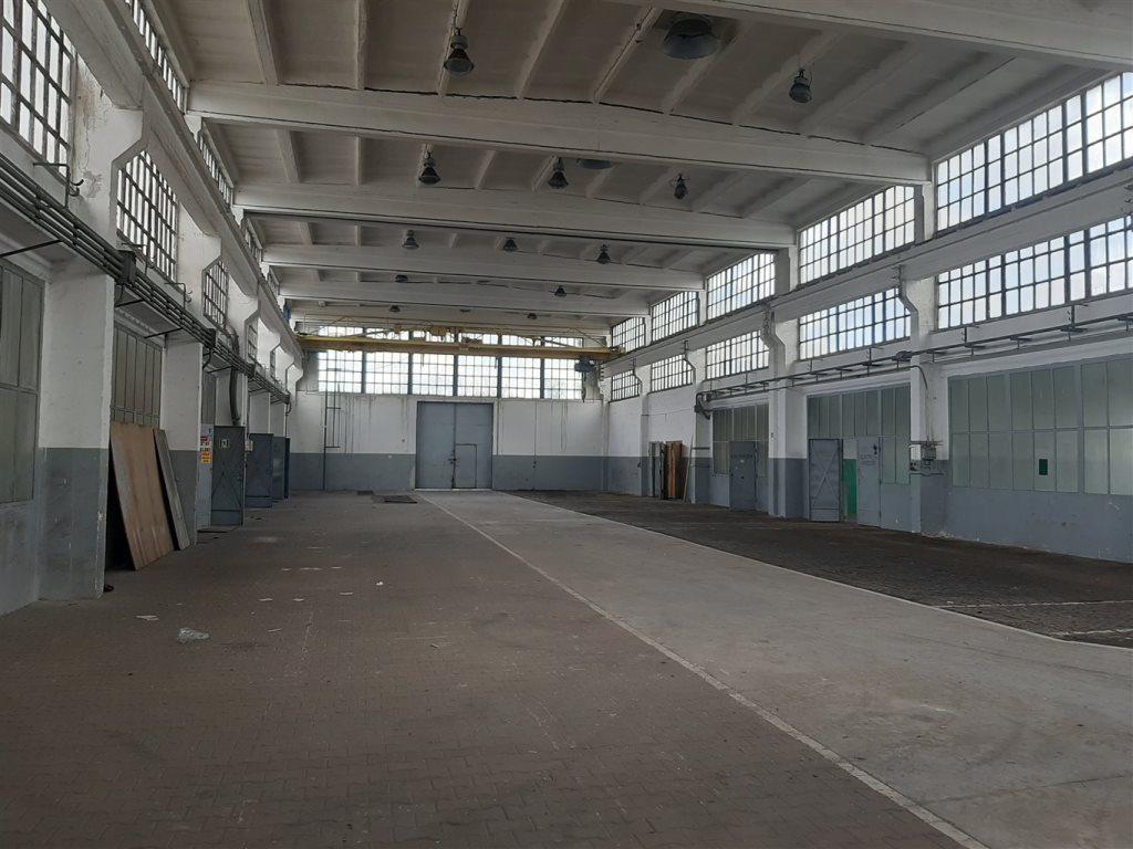 Lokal użytkowy na sprzedaż Gliwice  74000m2 Foto 9
