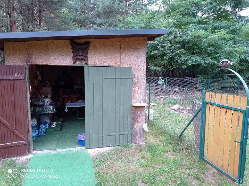 Działka budowlana na sprzedaż Dalików, Ostrów 1 a  3000m2 Foto 10