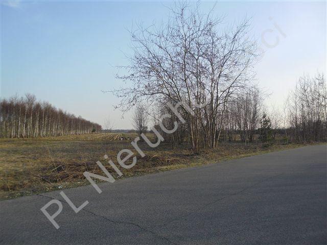 Działka rolna na sprzedaż Stanisławów  21520m2 Foto 3