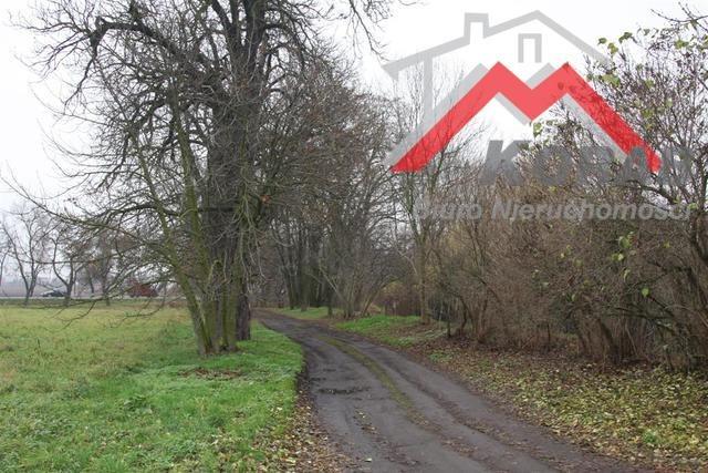 Działka budowlana na sprzedaż Święcice, W pobliżu Ożarowa Mazowieckiego  1200m2 Foto 9