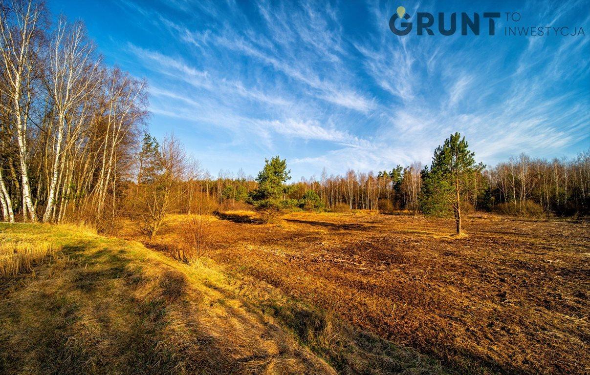 Działka budowlana na sprzedaż Dąbrowa Zielona  750m2 Foto 7