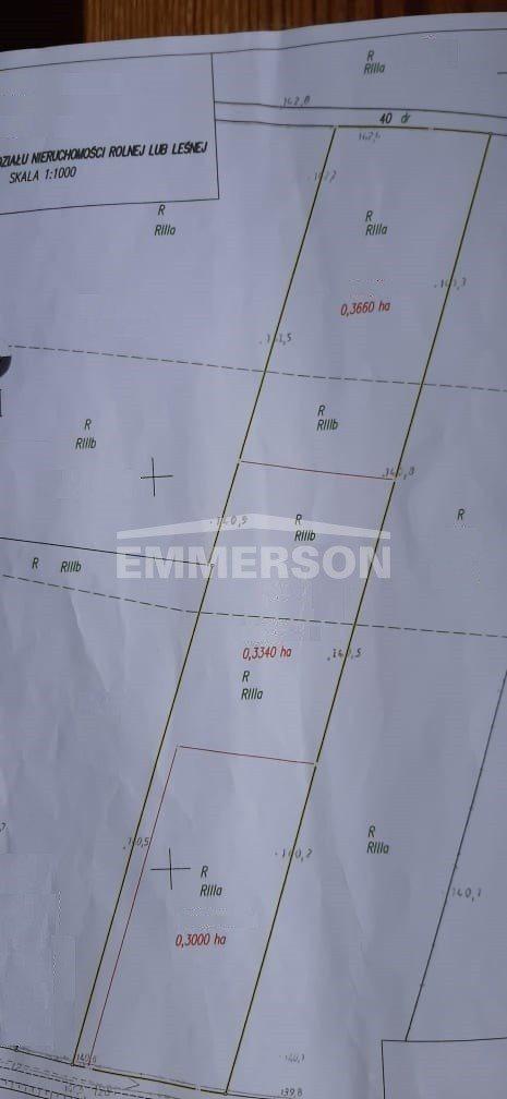 Działka budowlana na sprzedaż Lutynia, Lutynia  10000m2 Foto 2