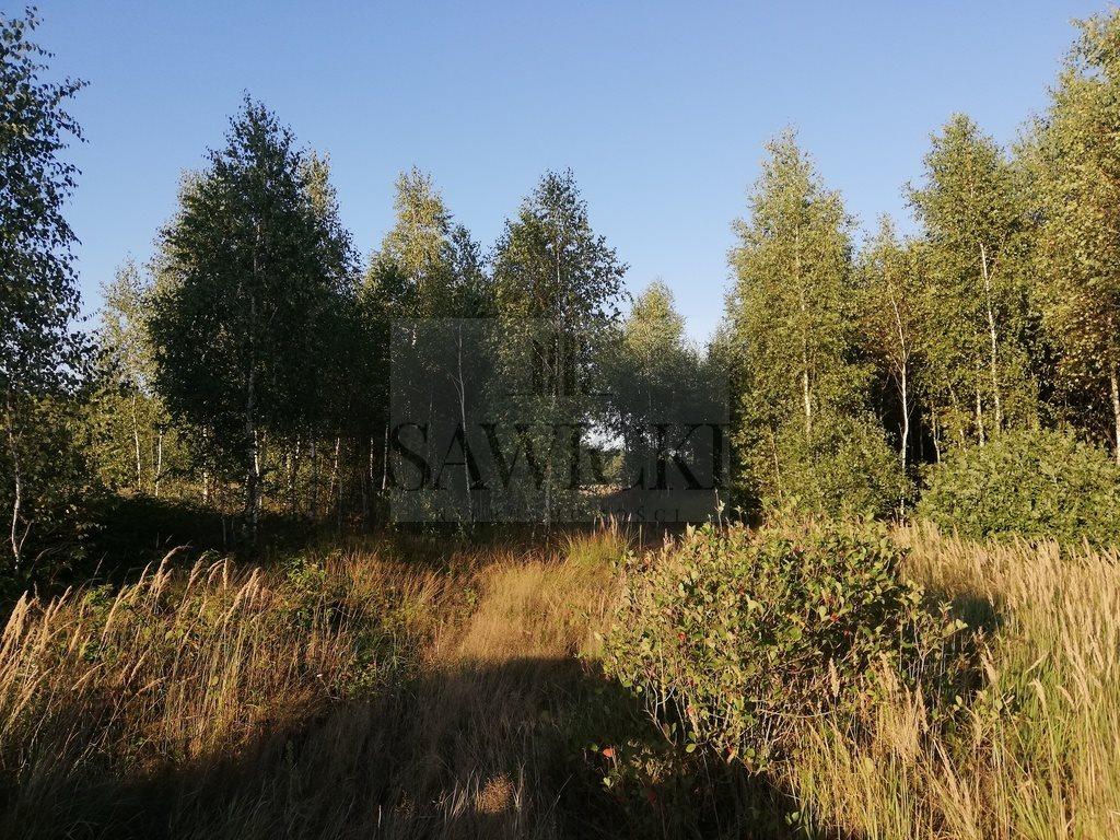 Działka rekreacyjna na sprzedaż Orzechów-Kolonia  22800m2 Foto 1