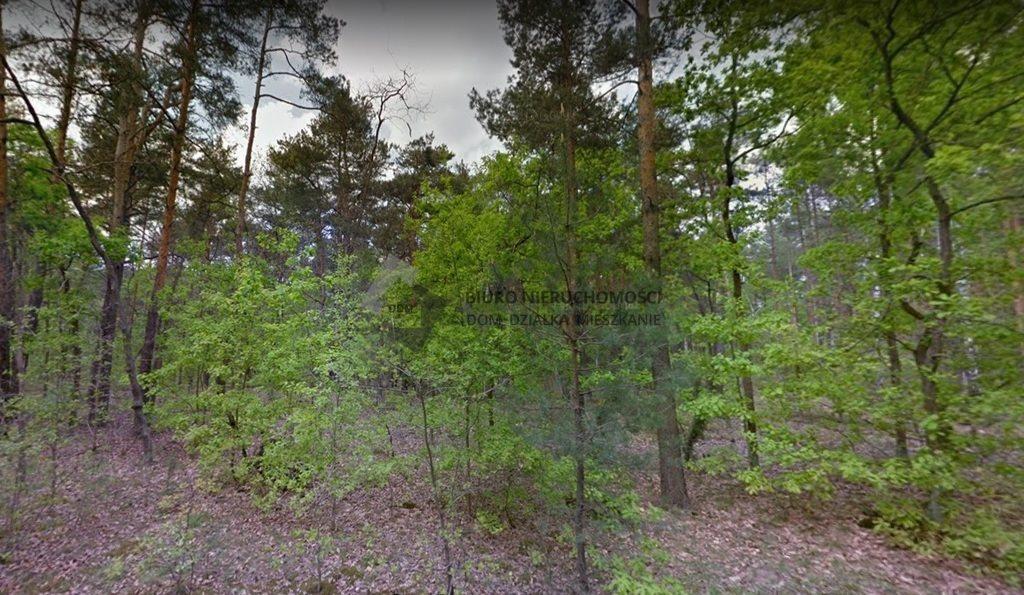 Działka leśna na sprzedaż Warszawa, Wawer, Anin  9616m2 Foto 4
