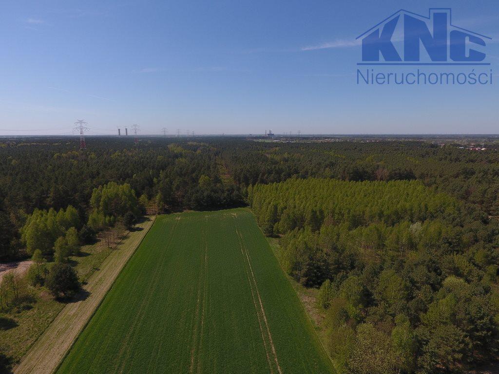 Działka leśna na sprzedaż Laskowiec  5400m2 Foto 4
