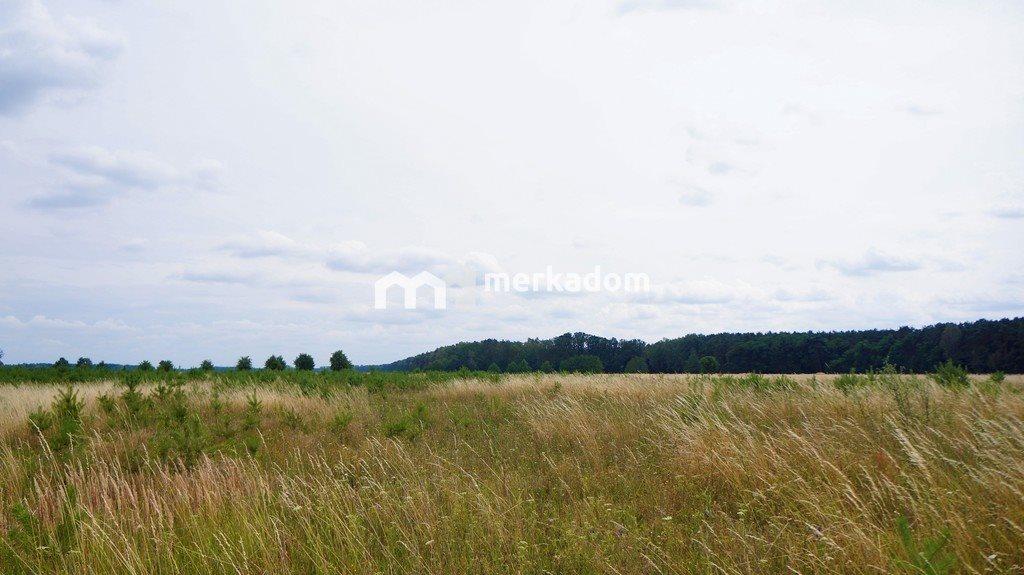 Działka rolna na sprzedaż Grzybowo  21116m2 Foto 4