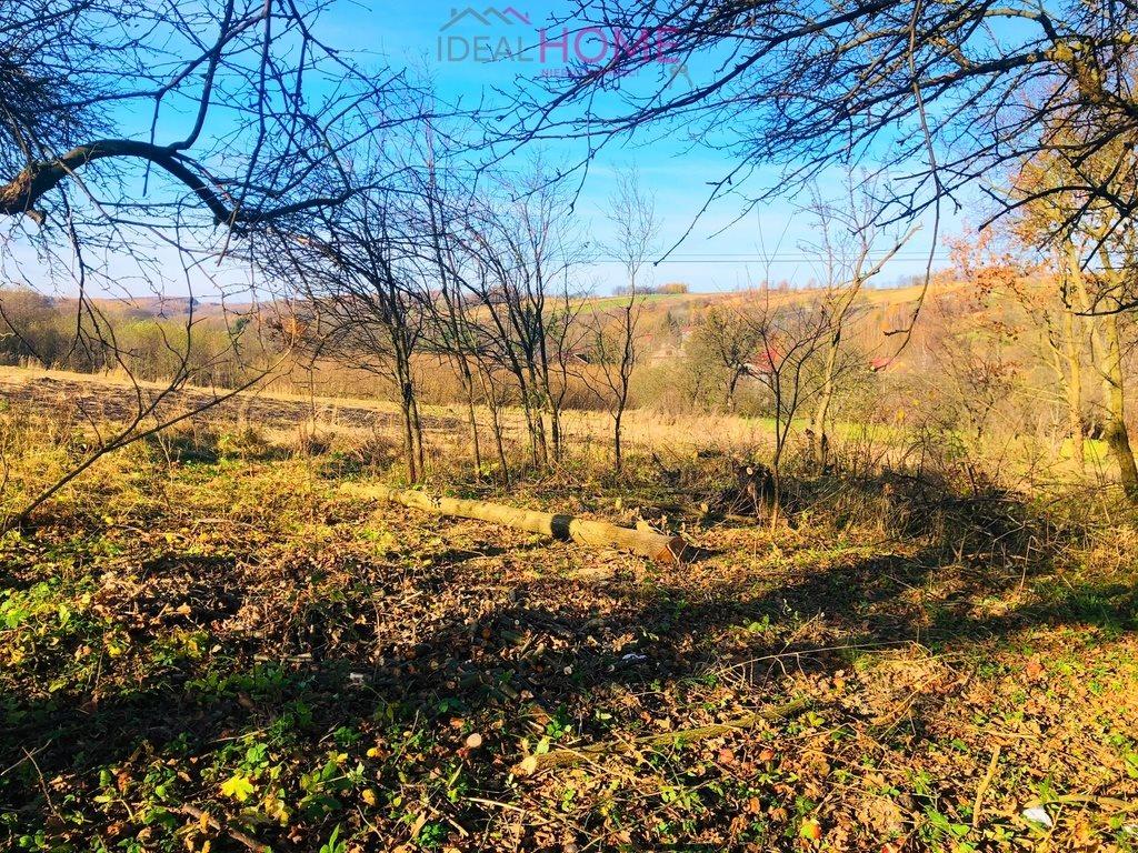 Działka leśna na sprzedaż Siedleczka  2700m2 Foto 4