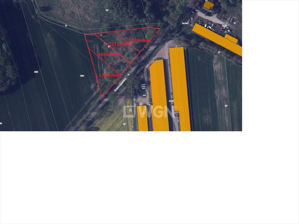 Działka budowlana na sprzedaż Byków, Byków, Aleja Czereśmiowa  1200m2 Foto 6