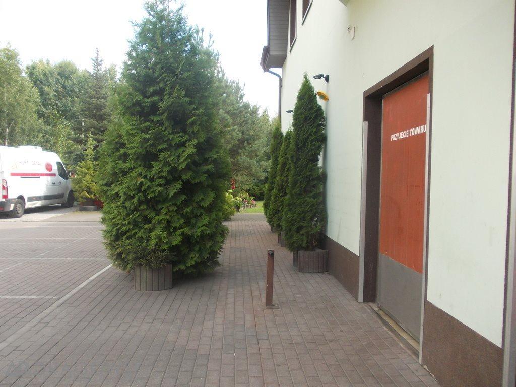 Lokal użytkowy na sprzedaż Wołomin  800m2 Foto 9