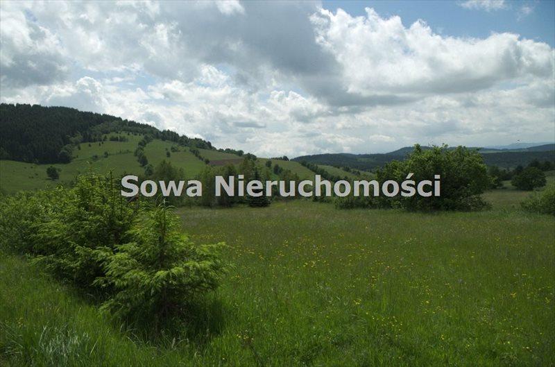 Działka budowlana na sprzedaż Sierpnica  1000m2 Foto 11