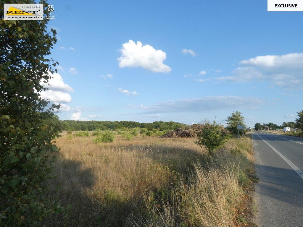 Działka siedliskowa na sprzedaż Ostromice  3160m2 Foto 5