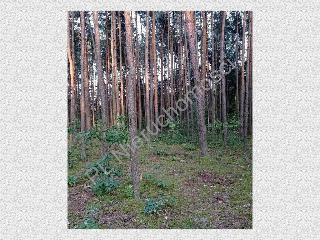 Działka rolna na sprzedaż Mościska  35000m2 Foto 1