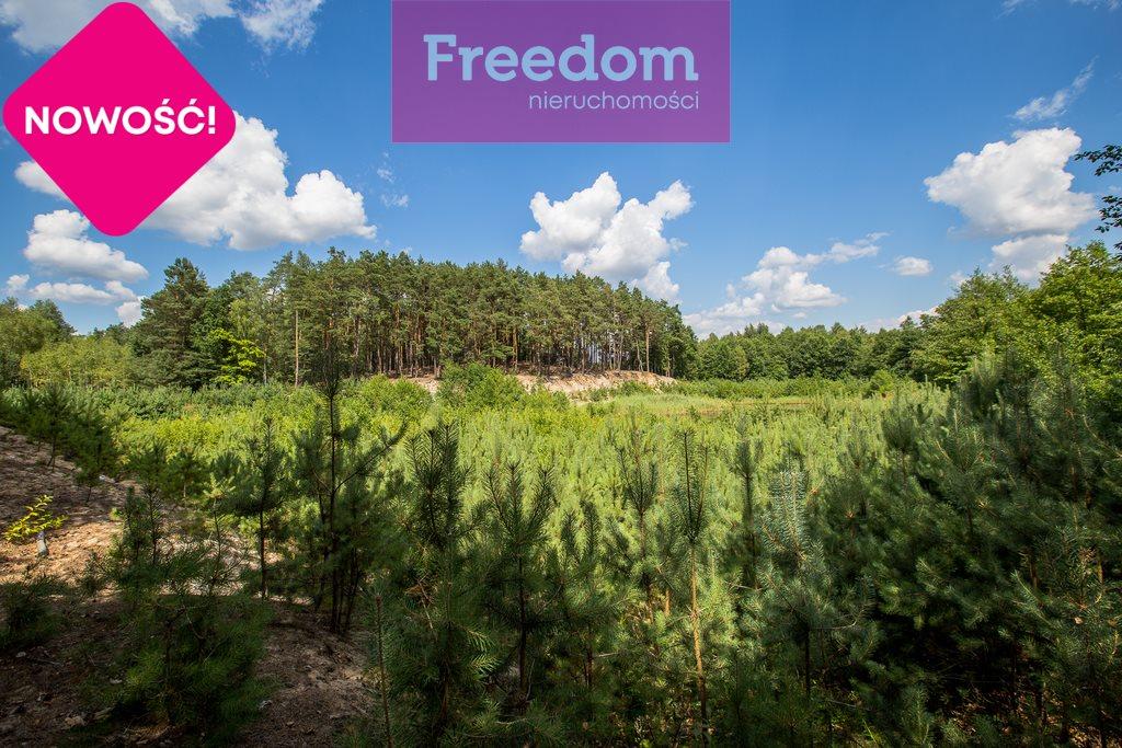Działka leśna na sprzedaż Zielonka  38097m2 Foto 8