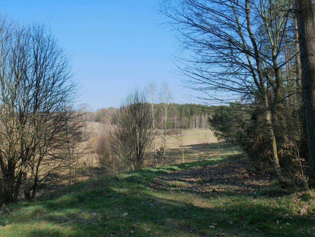 Działka budowlana na sprzedaż Strzepcz, ks. Blocków  1529m2 Foto 7