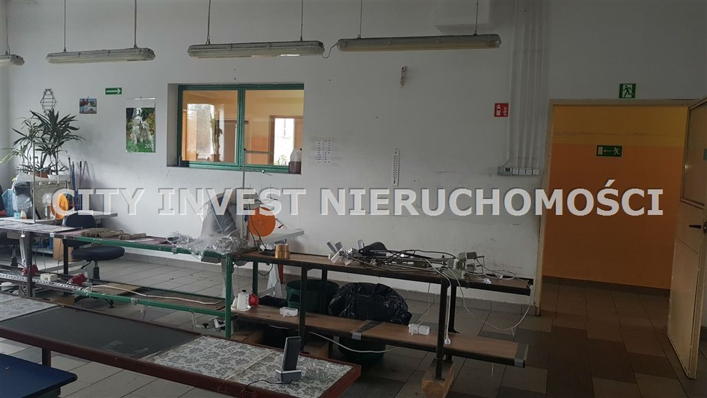 Lokal użytkowy na sprzedaż Zielona Góra, Jany  470m2 Foto 2