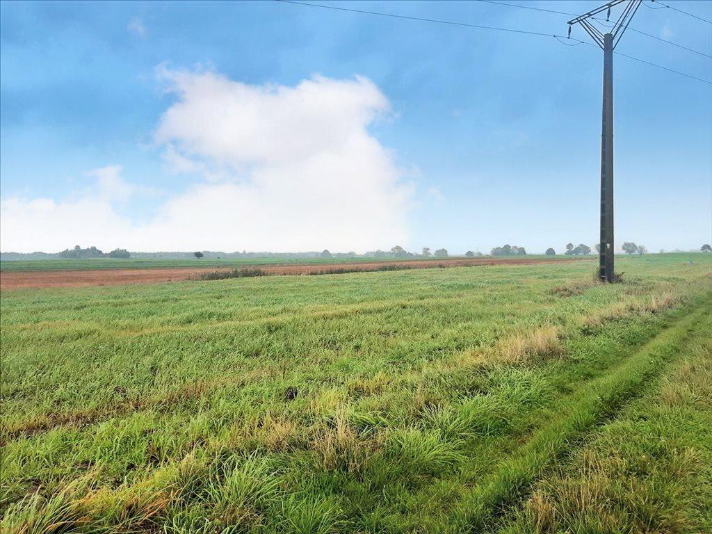 Działka rolna na sprzedaż Mielenko, Mielno  3020m2 Foto 3