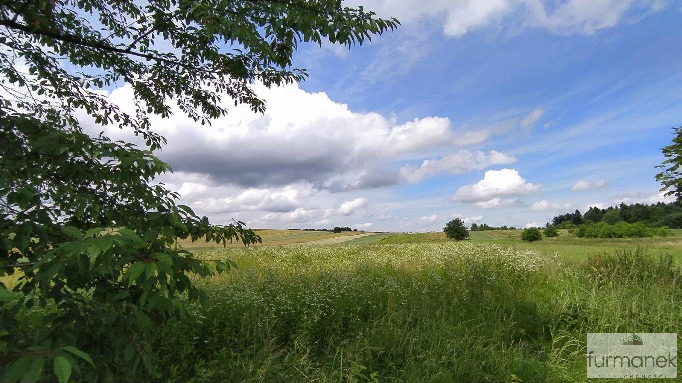 Działka rolna na sprzedaż Stanisławów  16962m2 Foto 1