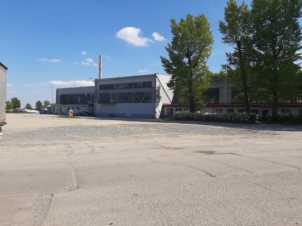 Lokal użytkowy na sprzedaż Gliwice  74000m2 Foto 2