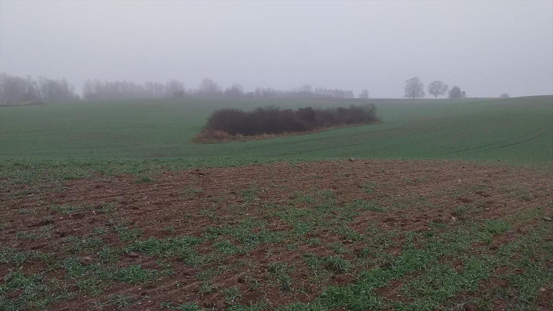 Działka gospodarstwo rolne na sprzedaż Klucznik  7000000m2 Foto 6