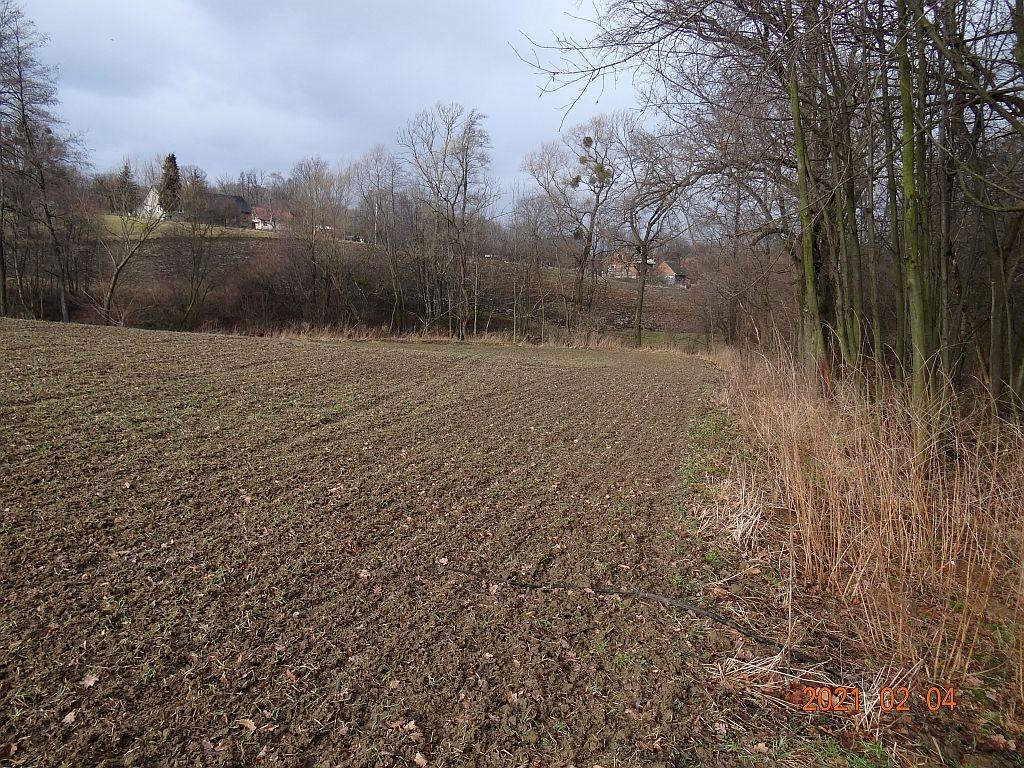 Działka rolna na sprzedaż Puńców, Wielogroga  9880m2 Foto 4