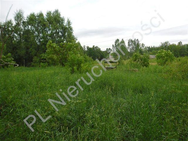 Działka rolna na sprzedaż Stanisławów  26000m2 Foto 6