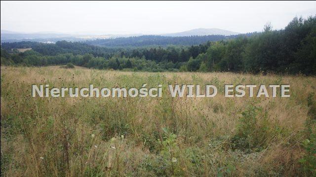 Działka rolna na sprzedaż Lesko, Huzele  88812m2 Foto 6