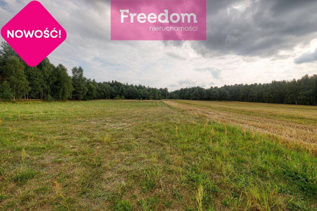 Działka rolna na sprzedaż Ożegów, Piaskowa  30026m2 Foto 5