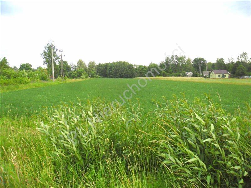 Działka rolna na sprzedaż Lubomin  14500m2 Foto 4