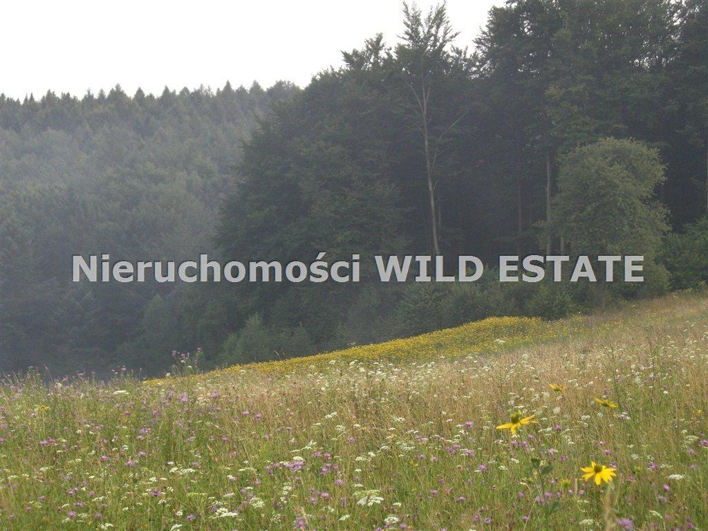 Działka budowlana na sprzedaż Zagórz, Brzozowiec  7363m2 Foto 12