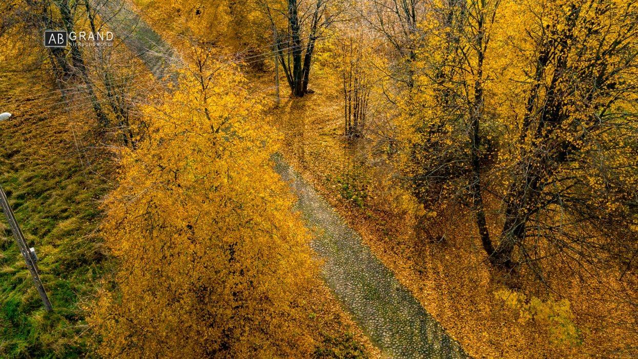 Działka inna na sprzedaż Markowszczyzna, Turośń Kościelna, Markowszczyzna  887m2 Foto 6