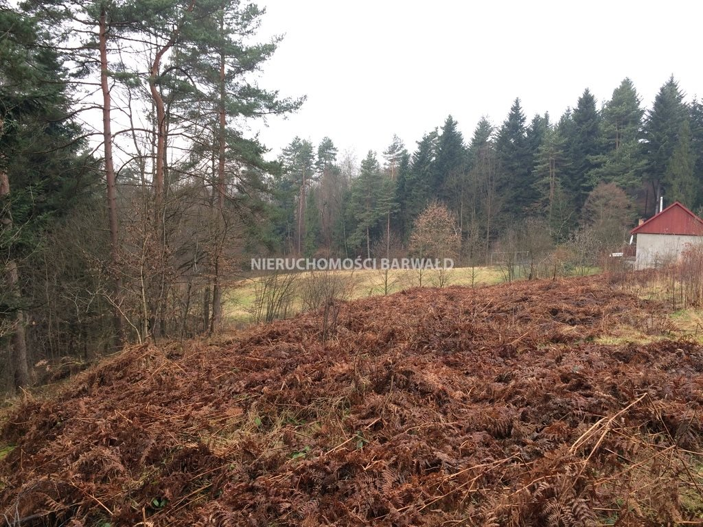 Działka rolna na sprzedaż Barwałd Dolny  1412m2 Foto 1