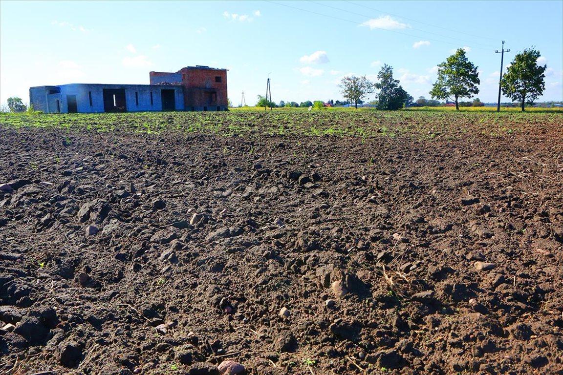 Działka budowlana na sprzedaż Zakroczym, Zakroczym  5268m2 Foto 8