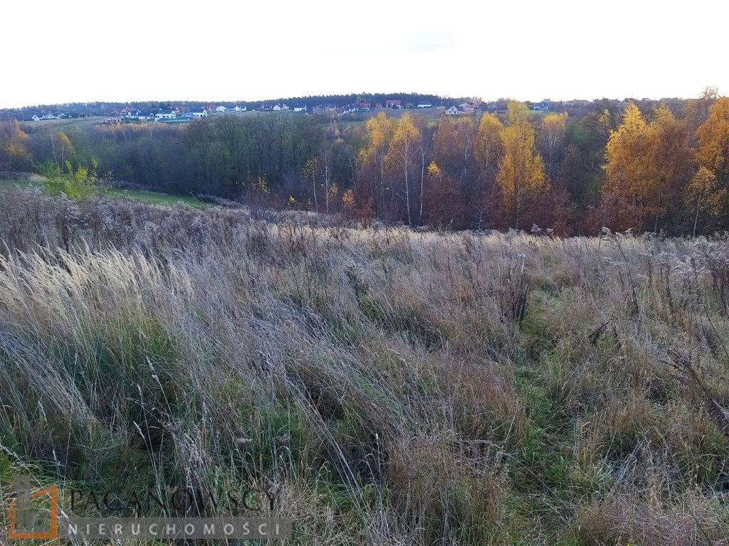 Działka leśna na sprzedaż Michałowice  5000m2 Foto 3
