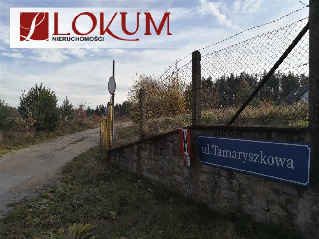 Lokal użytkowy na sprzedaż Czapielsk, Tamaryszkowa  315m2 Foto 11