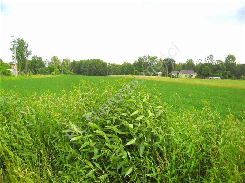 Działka rolna na sprzedaż Lubomin  14500m2 Foto 3